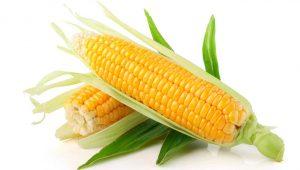 اعرفي فوائد الذرة ومتى تقدمى لطفلك الذرة وكيف تعديها لطفلك