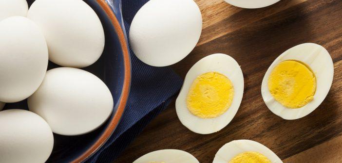 متى يمكننا تقديم البيض للاطفال ؟