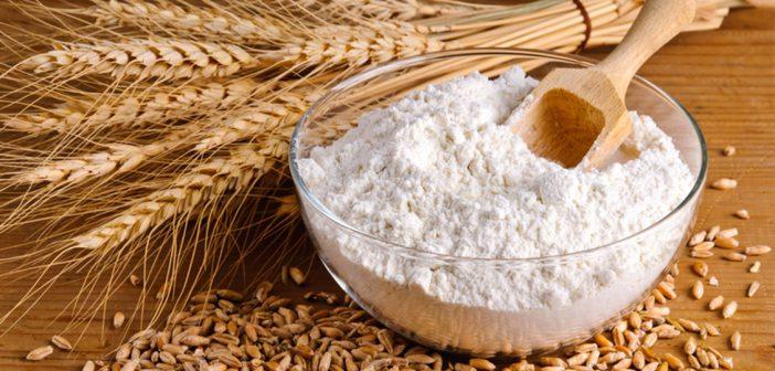 فوائد القمح ومتى يمكنك تقديم القمح لطفلك؟