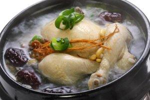 فوائد الدجاج والديك الرومي في تغذية الاطفال