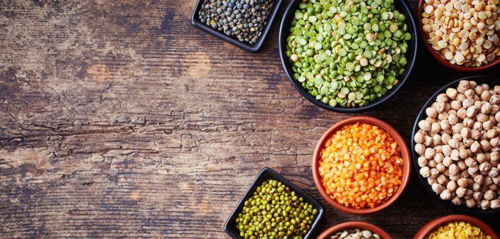 فوائد العدس للاطفال ونوع العدس الافضل لتقديمة في غذاء طفلك ؟