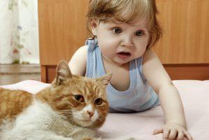 هل تربية الحيوانات الاليفة بالمنزل خطر على أطفالنا !!