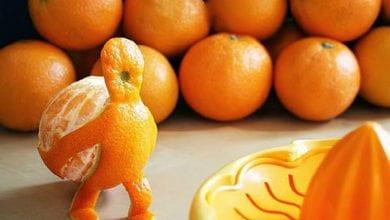 Photo of البرتقالة الفنية أفكار من البرتقال بالصور