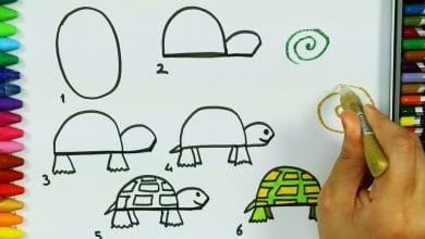 Photo of كيفية رسم سلحفاة بطريقة بسيطة بالصور