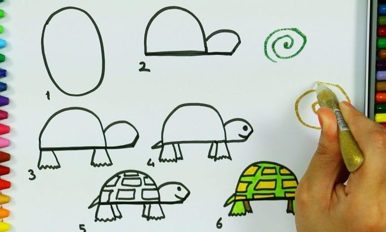 كيفية رسم سلحفاة بطريقة بسيطة بالصور والخطوات تعليم الرسم فورنونو