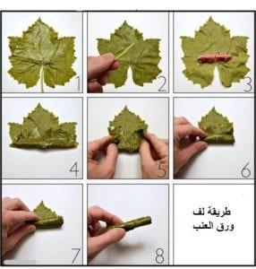 طريقة عمل ورق العنب بالصور مع خطوات لف ورق العنب بالتفصيل