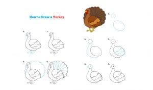 تعليم طريقة رسم الديك الرومي أو التركى بالصور