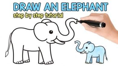 Photo of تعليم طريقة رسم الفيل للأطفال بالصور