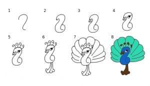 تعليم طريقة رسم الطاووس بطريقة مبسطة بالصور تعليم الرسم فورنونو