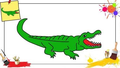 Photo of تعليم طريقة رسم التمساح مبسط بالصور