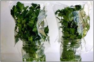 بالصور أفضل طرق الحفاظ على الخضروات والفواكة أطول فترة ممكنة