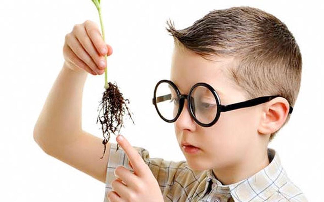 Photo of طرق تنمية الذكاء عند الاطفال من تغذية وأساليب تربوية