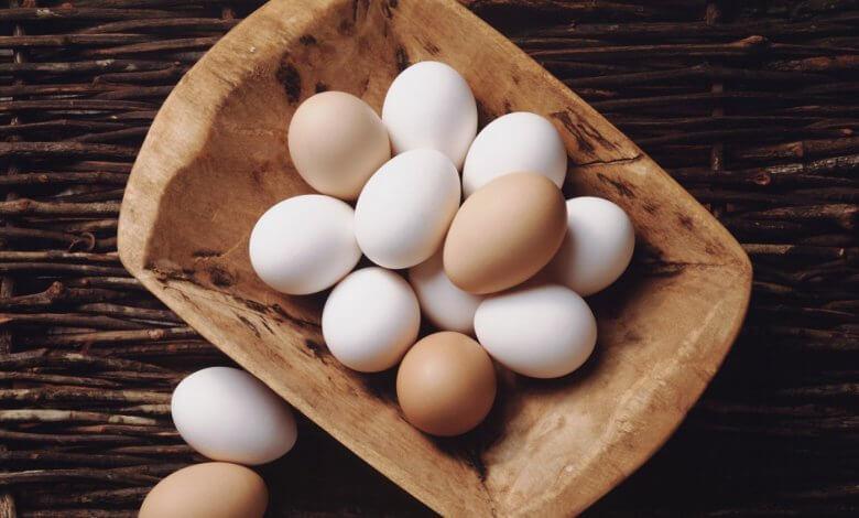 لماذا لا يمكنك التخلي عن تناول البيض ؟