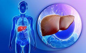 هل فيروس c واهماله يتحول الى اورام في الكبد؟
