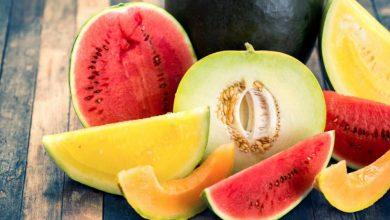 Photo of فوائد البطيخ والشمام في الصيف وكيف تشتريهم