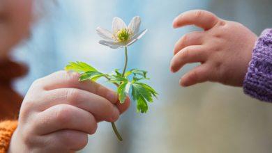 Photo of قصة عن العطاء بحب فكن مثل زجاجة العطر تفوح رائحة طيبة بأستمرار