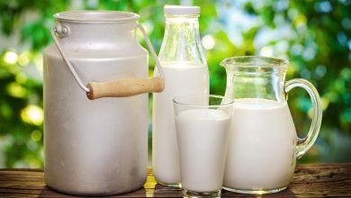 Photo of طريقة تخزين الحليب وحفظه بكل أنواعه