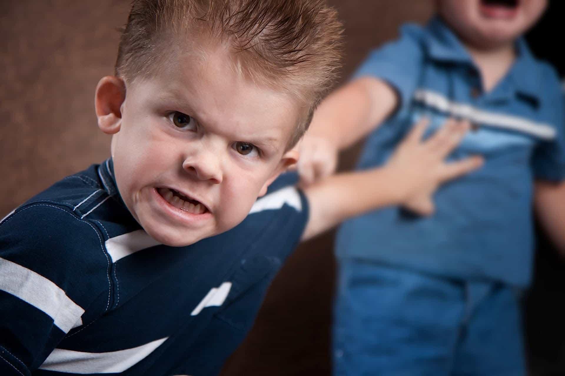 Photo of العدوانية عند الاطفال ولماذا ينشأ طفل عدواني والأخر لا