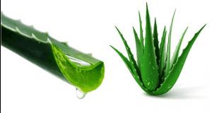 أفضل عشر مغذيات طبيعية للبشرة