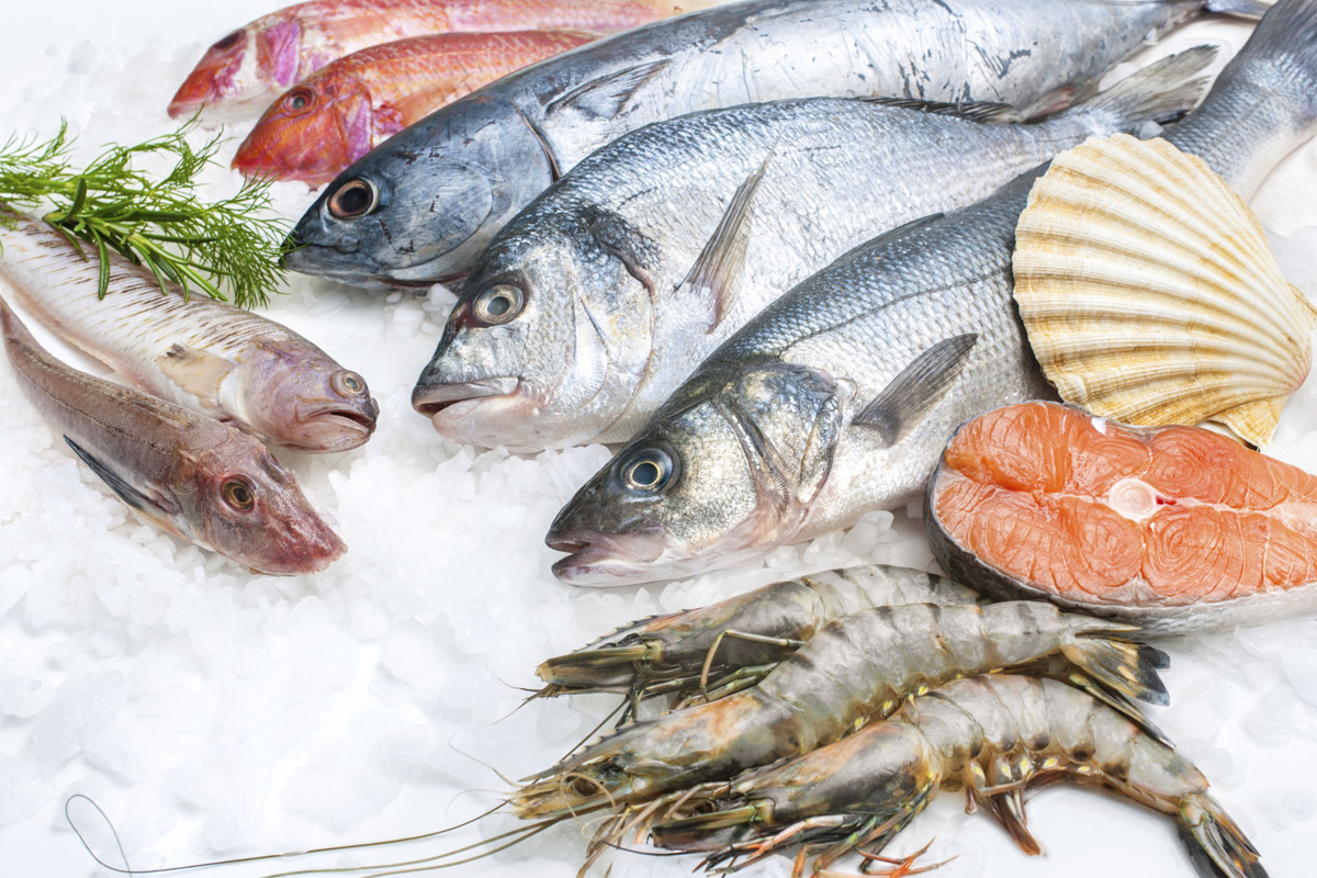 Photo of فوائد تناول الاسماك والمأكولات البحرية