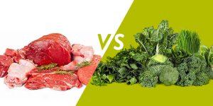 ما هى اسباب تفضيل البروتين النباتي عن البروتين الحيوانى
