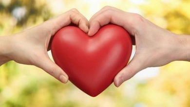 Photo of تاثير الحب والخوف على حياتنا والفرق بين روابط الحب وروابط الخوف