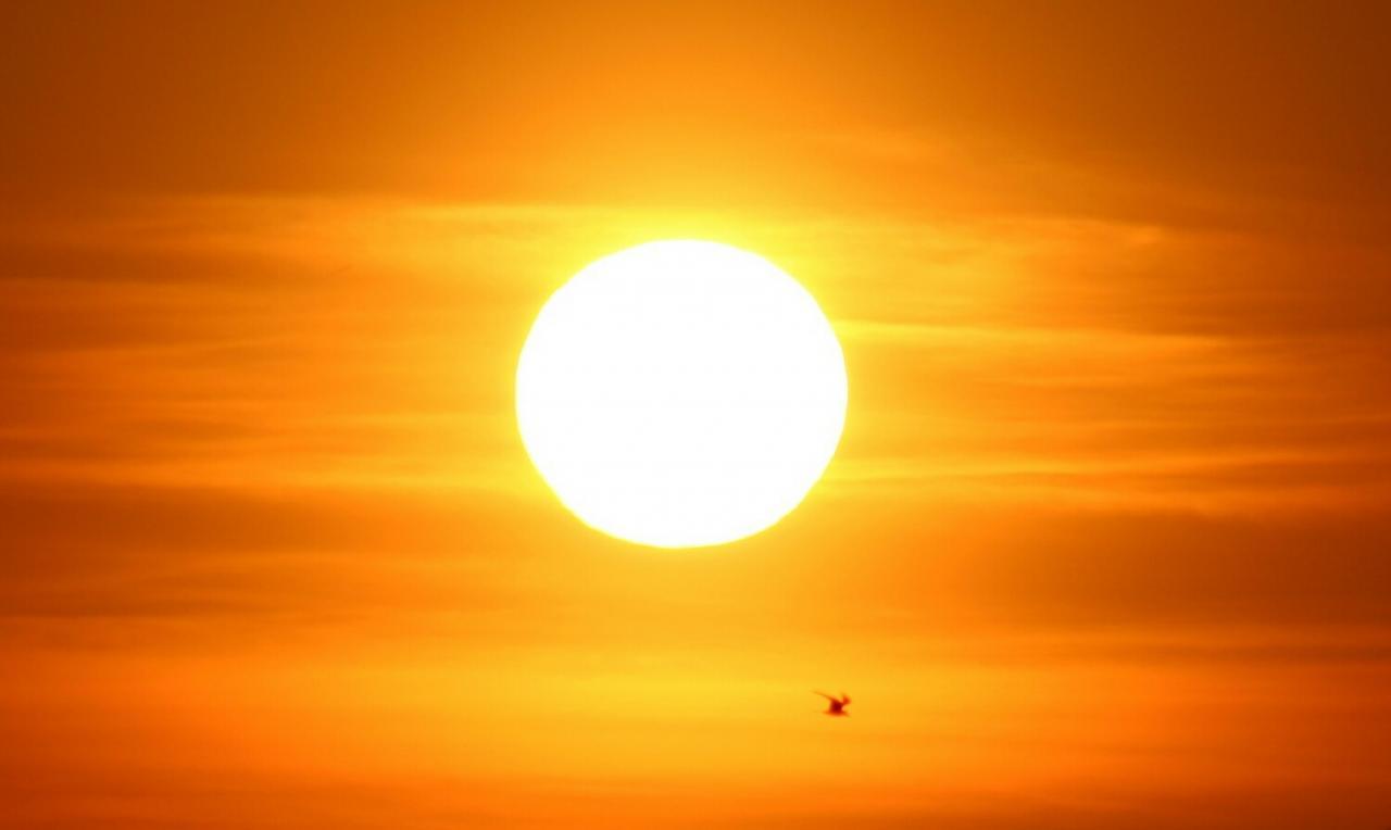 ما معنى والشمس تشرق والشمس 8