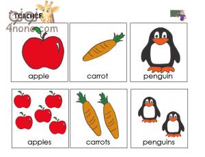 قواعد الجمع والمفرد Singular and plurals فى اللغة الانجليزية بالتفصيل