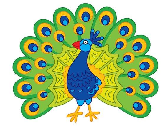 قصة طائر الطاووس رومي تعلم الطفل التواضع و تقدير الاخرين
