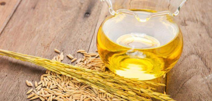 فوائد الشعير السحرية على الصحة