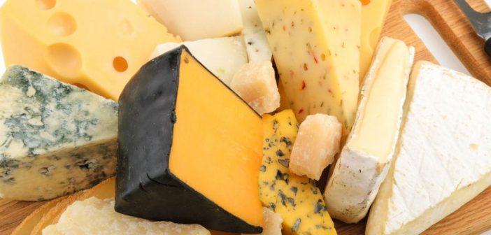 تجربت سالي فؤاد الشخصية في نزع الدهون من الجبن