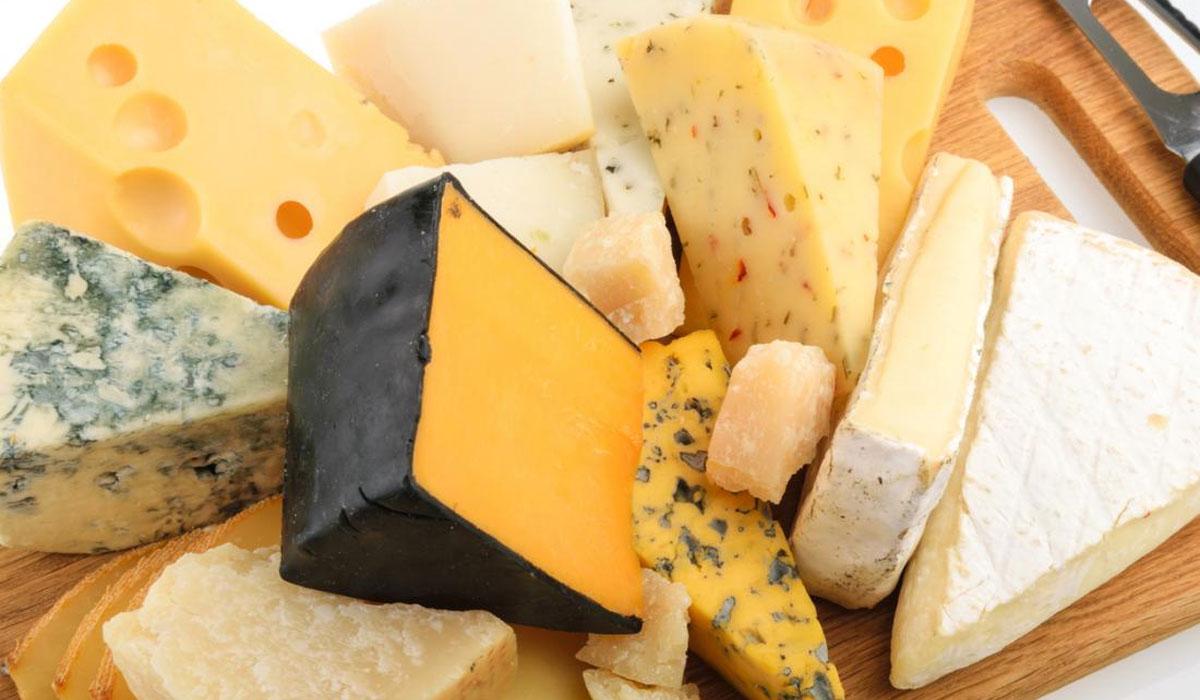 Photo of تجربت سالي فؤاد الشخصية في نزع الدهون من الجبن