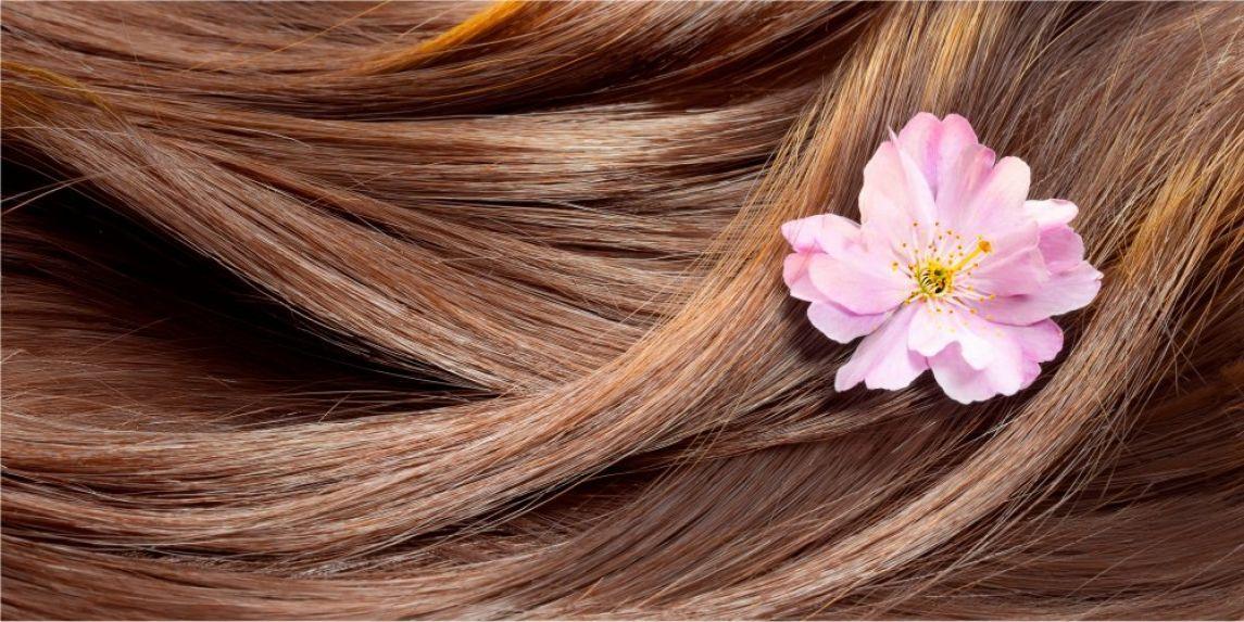 ملف العناية بالشعر لكل عروسة شعرك سوف يصبح كالهنود