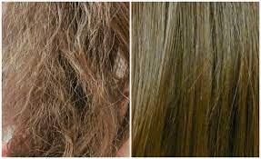 زيوت طبيعية لعلاج الشعر المتقصف والجاف