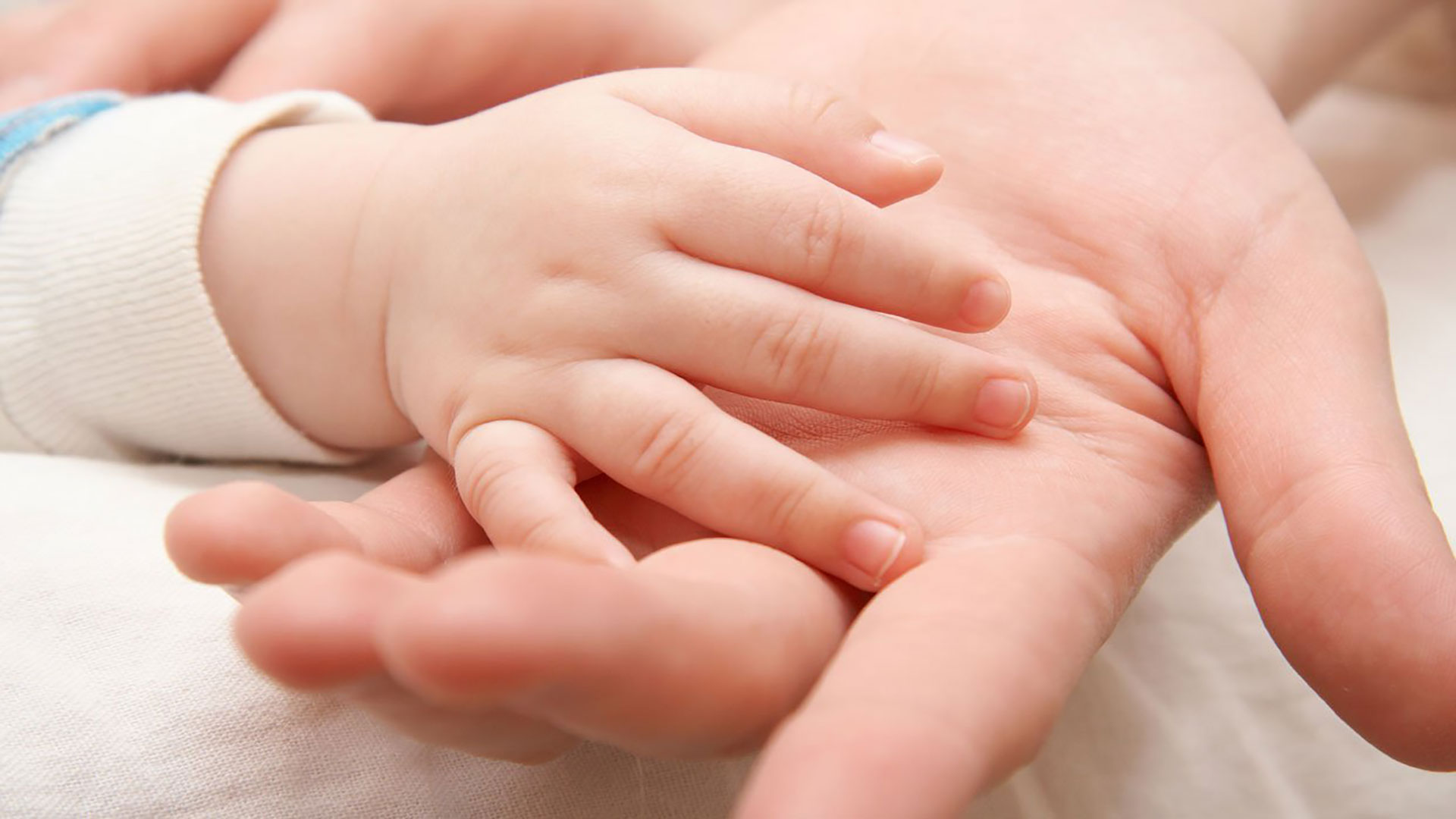 Photo of وصفات لعلاج تاخر الحمل وضعف المبايض وهرمون الحليب