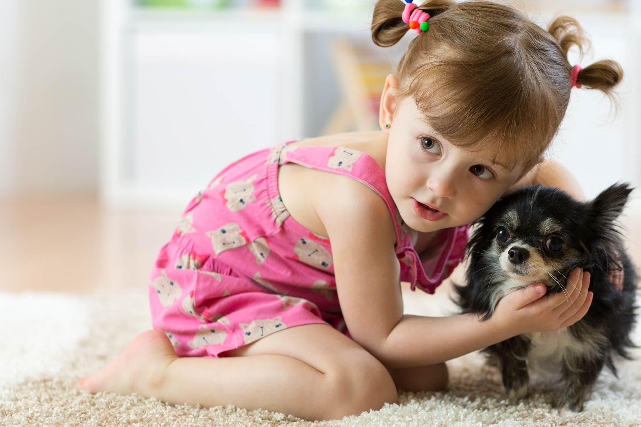 Photo of أسباب خوف الطفل من الحيوانات وطرق العلاج
