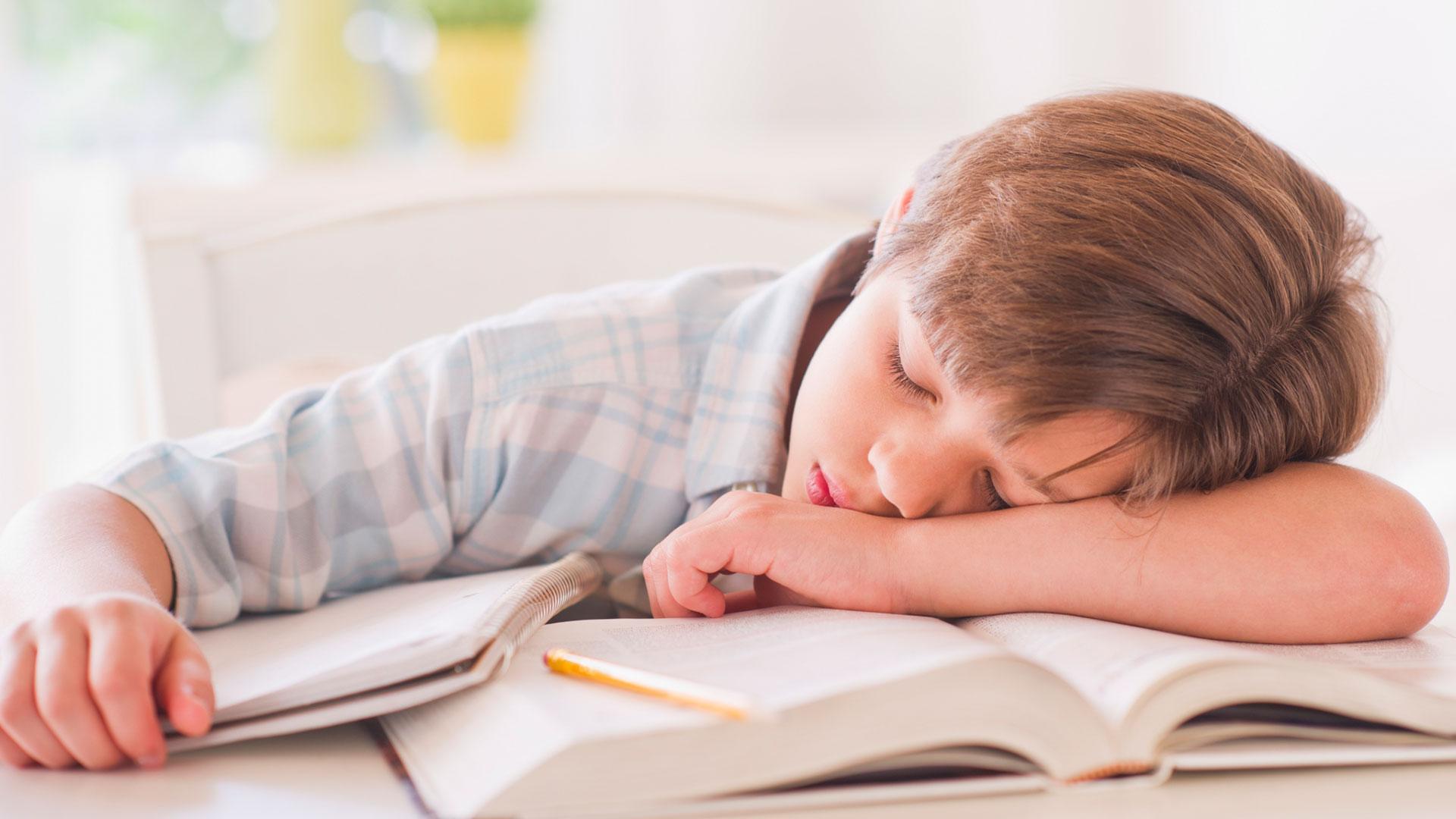 Photo of هل الواجبات المدرسية ليس لها جدوى وعبء على الطفل؟