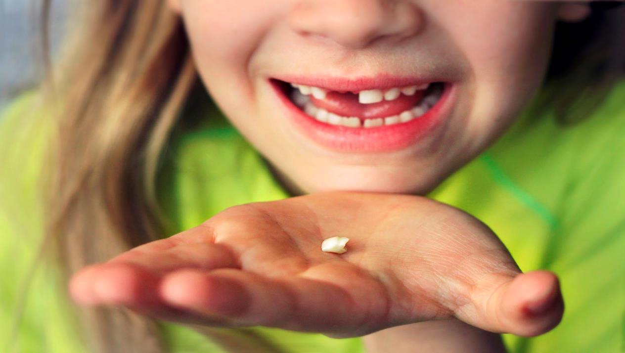Photo of هل خلع الاسنان اللبنية للاطفال يؤثر على الأسنان الجديدة؟