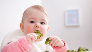 Photo of فوائد البروكلي ومتى يمكن لطفلى أن يأكل البروكلى؟