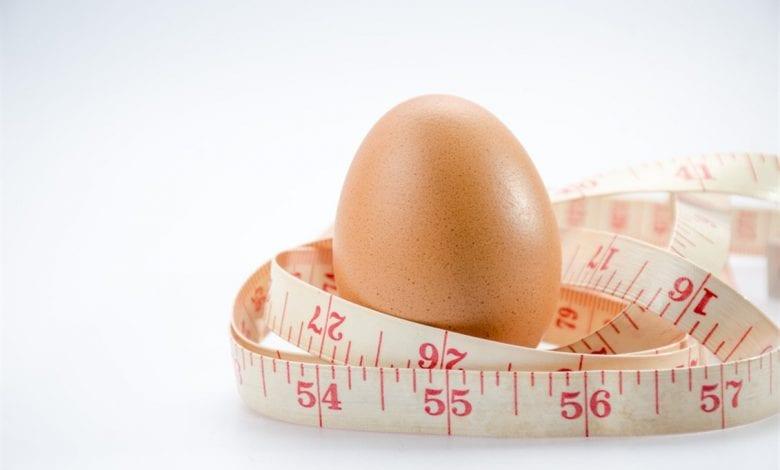 رجيم البيض المسلوق يخلصك من الوزن الزائد