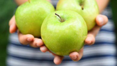 Photo of علاقة الكورتيزون بالسمنة وما فائدة تناول التفاح الاخضر