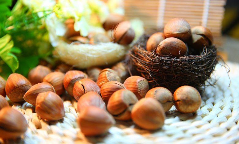 فوائد الكستناء للصحة ( أبو فروة )