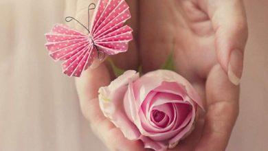 Photo of العلاقة بين الصدريات النسائية وسرطان الثدي