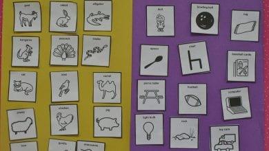 Photo of sheets علوم ابتدائي لغات